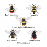 bummblebees__honey_bee