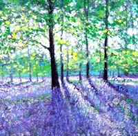 cards_-_ssl001_bluebells_and_sunlight