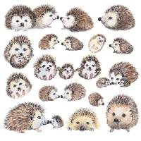 hedgehogs_828630627