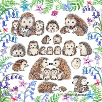 hedgehogs_and_wildflowers_