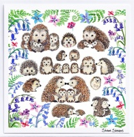 hedgehogs_and_wildflowers_website