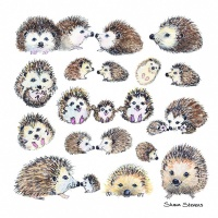 hedgehogs_coaster