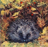 new_forest_hedgehog